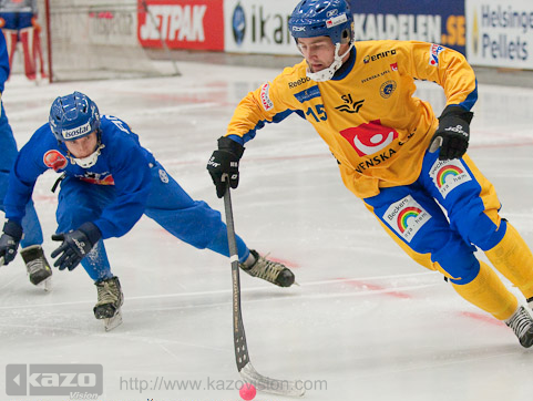 2009 Bandy World Championship