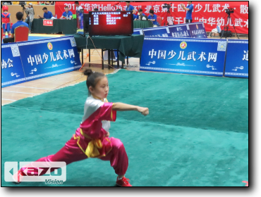 2017 Beijing Junior Wushu Competition